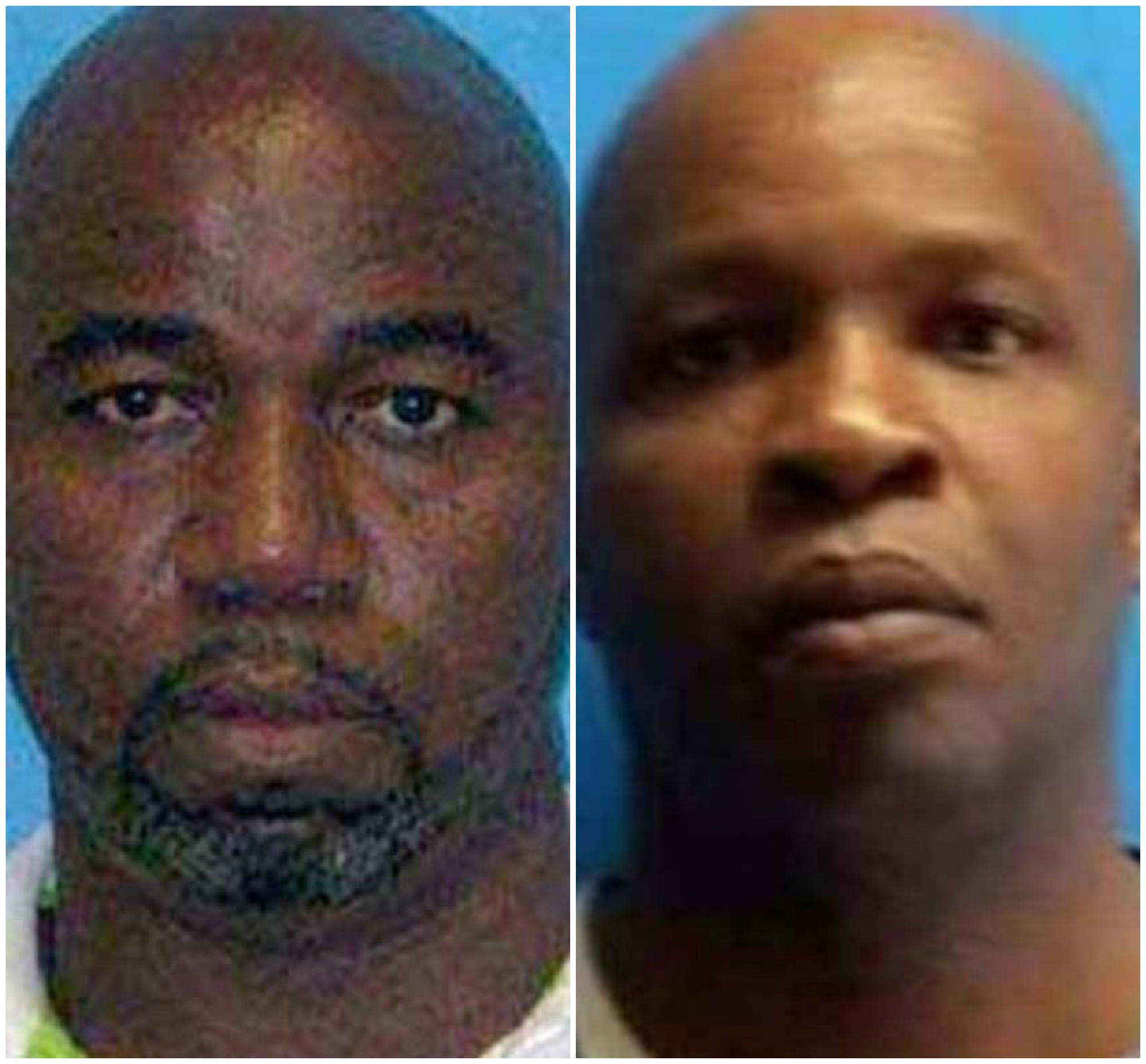 Presuntos ladrones Miami, Florida