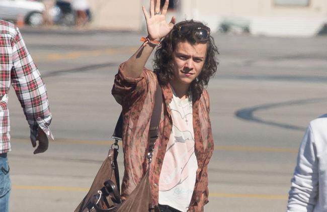 Harry Styles podría ser el siguiente en abandonar One Direction