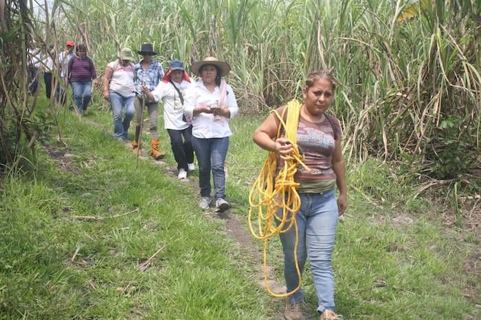 Activistas y familias de desaparecidos en busca de restos en Veracruz.