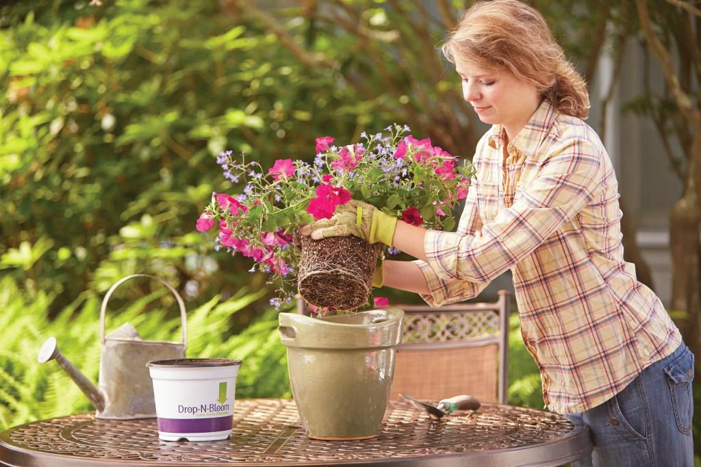 Las macetas de diversos tamaños,con drenajes, son ideales para crear un jardín colorido en el patio o terraza chica.