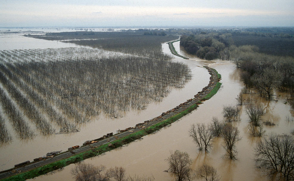 break on the north levee of the Bear River near old Route 512 on the border of Yuba County and Placer County, California as seen in this photo taken on Jan. 4, 1997 (Foto: Dale Kolke/California Department of Water Resources)