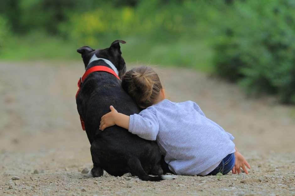 Como los niños andan pegados a sus mascotas, es importante mandar analizar las heces de los animalitos para saber si tienen o no parásitos que pueden transferirse al organismo de los menores o adultos.