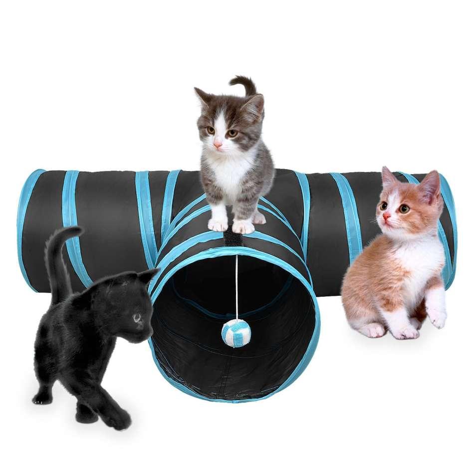 Túnel para gato
