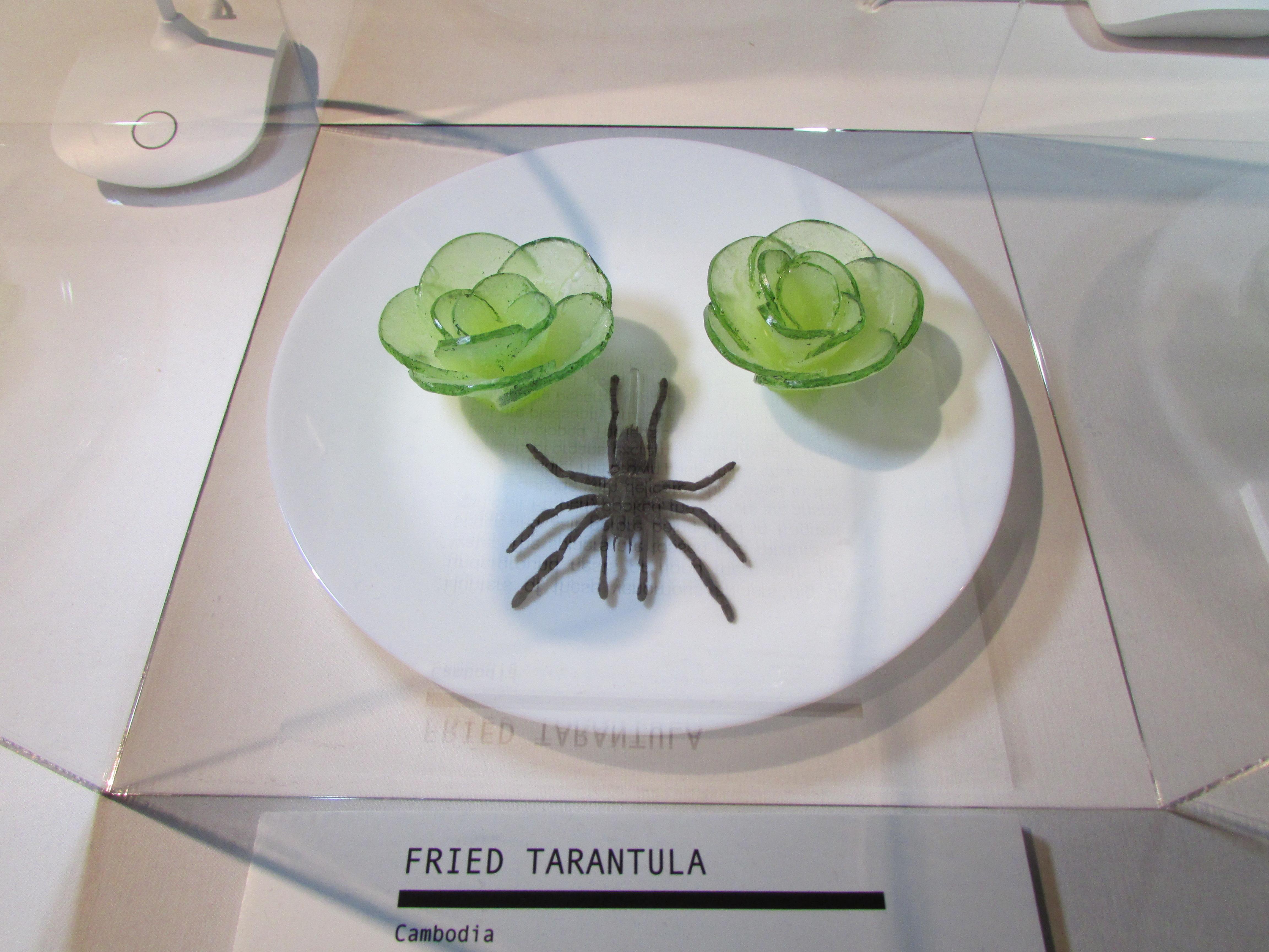 Las tarántulas se comen fritas en algunos países de Asia. (Araceli Martínez/La Opinión).